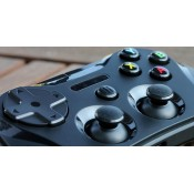 GAMING ACCESSORIES (22)