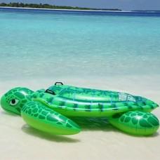 Φουσκωτή θαλάσσια χελώνα